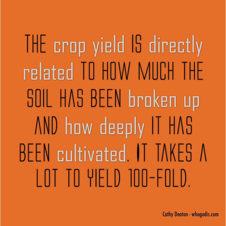 crop yield related to cultivation and soil broken up