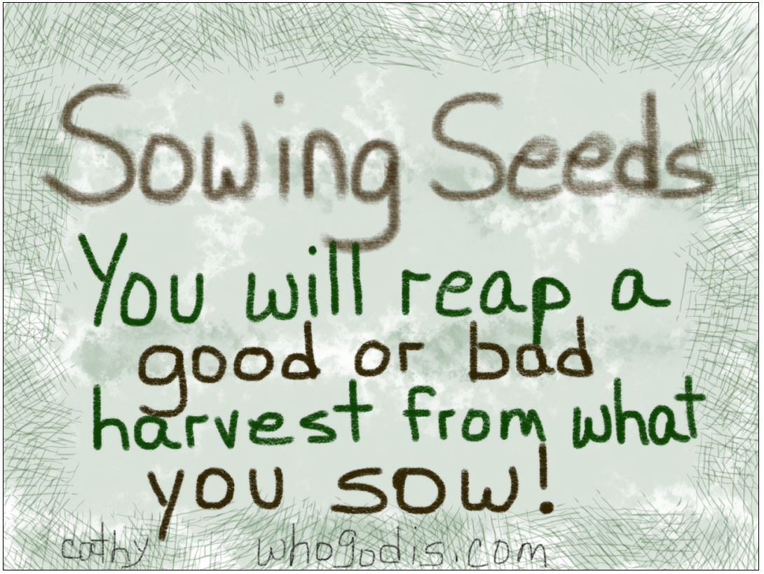 Quotes About Planting Seeds For Life Sowing Seeds  You Will Either Reap A Good Or Bad Harvest