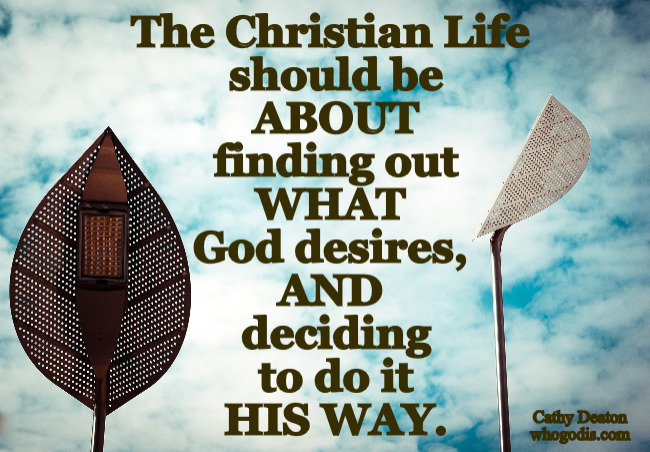 christian-life-what-god-desires